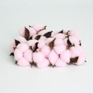 Cotton pink 15pcs