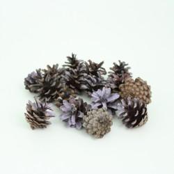 "Dried seedcones 20pcs, ""light violet"""