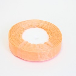 Organza ribbon 20mm/40m