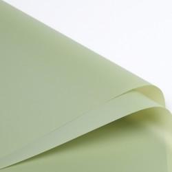 Waterproof flower film BASIC Pastel  Green  20sheets