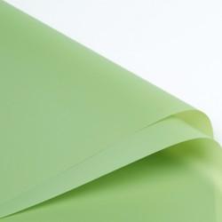 Waterproof flower film BASIC HOT Green 20sheets